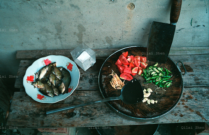 Ingredients of a family dinner in Yongle, Guangxi Province, China in October 2007.