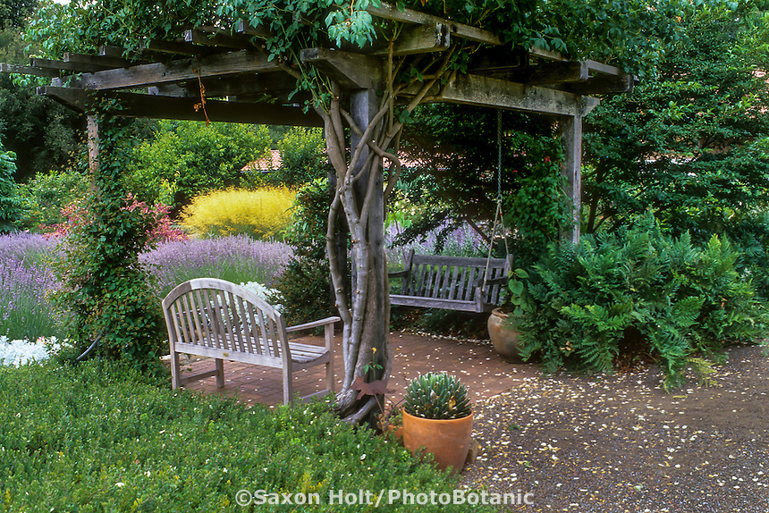 Vine covered arbor pergola provides shade to benches in sitting area in drought tolerant garden