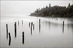 Vashon Island, Washington:<br /> Pilings and reflections on the Colvos Passage at Cove