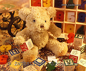 Xavier, CUTE ANIMALS, teddies, photos, SPCHTEDDIES54,#ac#