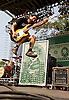Less Than Jake @ Riot Fest, Humboldt Park, Chicago IL 9-16-12