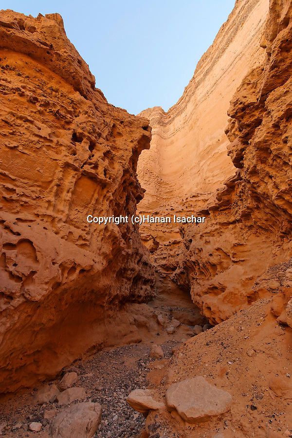 Israel, the Negev desert. Ada Canyon in Wadi Paran
