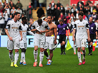 Swansea v Norwich, Liberty stadium Swansea, Saturday 29th March 2014<br /> <br /> Photographs by Amy Husband<br /> <br /> Swansea players leaving the field after beating Norwich 3-0