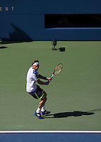 Ferrer Backhand US Open 2013