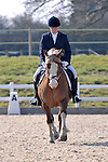 17/03/2016 - Class 5 - Unaffiliated Dressage - Brook Farm Training Centre