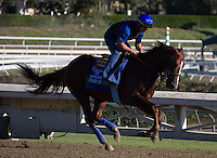 Fast Bullet galloping for trainer Bob Baffert at Santa Anita Park in Arcadia California