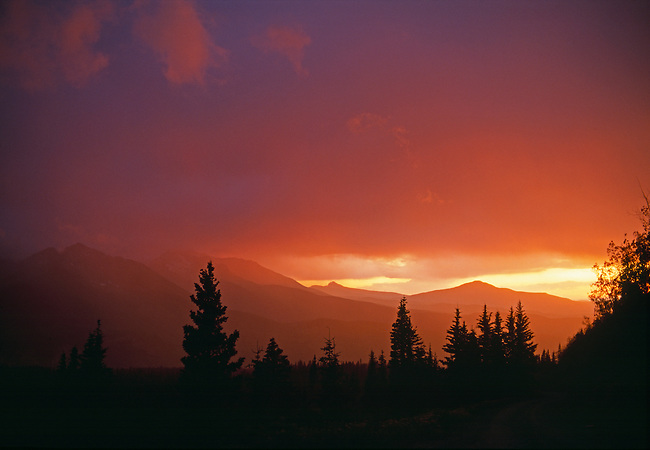 Brilliant colors fill a sunset sky above forest silhouettes near Telluride, CO