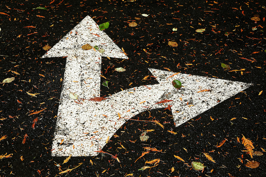 Arrows painted on asphault road with fallen leaves