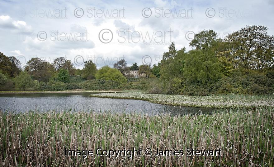 13/05/2010   Copyright  Pic : James Stewart.004_pond_larbert_house  .::  NHS FORTH VALLEY ROYAL HOSPITAL :: THE POND :: LARBERT HOUSE ::