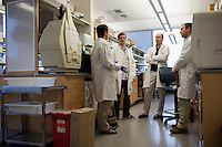 Dr. Dan Barouch speaks with researchers in his lab at the Center for Life Sciences building at Beth Israel Deaconess Medical Center in Boston, Massachusetts, USA. Pictured are Dr. Dan Barouch (from left), Peter Abbink (virology manager), Dr. James Whitney (co-author and Instructor in Medicine at Beth Israel Deaconess Medical Center and Harvard Medical School), and Dr. Rafael Larocca (post-doctoral fellow).<br /> <br /> Dr. Dan Barouch is Professor of Medicine and physician at Beth Israel Deaconess Medical Center and Harvard Medical School in Boston, Massachusetts, USA. He is director of the Barouch Lab at the Center for Virology and Vaccine Research at Beth Israel Deaconess Medical Center and has recently published research on the evaluation of novel antibody therapy for HIV infection.<br /> <br /> CREDIT: M. Scott Brauer for the Wall Street Journal<br /> AIDS