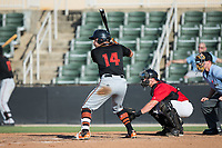 Daniel Fajardo (14) of the Delmarva Shorebirds at bat against the Kannapolis Intimidators at Kannapolis Intimidators Stadium on July 2, 2017 in Kannapolis, North Carolina.  The Shorebirds defeated the Intimidators 5-4.  (Brian Westerholt/Four Seam Images)