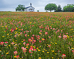 Gonzales County, Texas: Cheapside Interdenominational Community Church set in a field wildflowers.