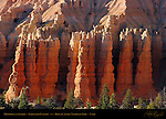Fairyland Hoodoos at Sunrise, Fairyland Canyon, Bryce Canyon National Park, Utah