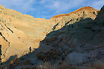 The John Day Fossil Beds National Monument