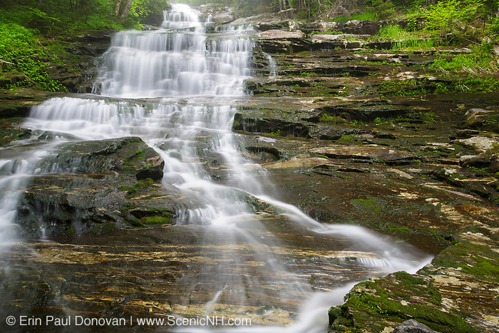 Beaver Brook Cascades on Beaver Brook in Kinsman Notch of the New Hampshire White Mountains on a rainy and foggy spring day. The Appalachian Tail passes by these cascades.