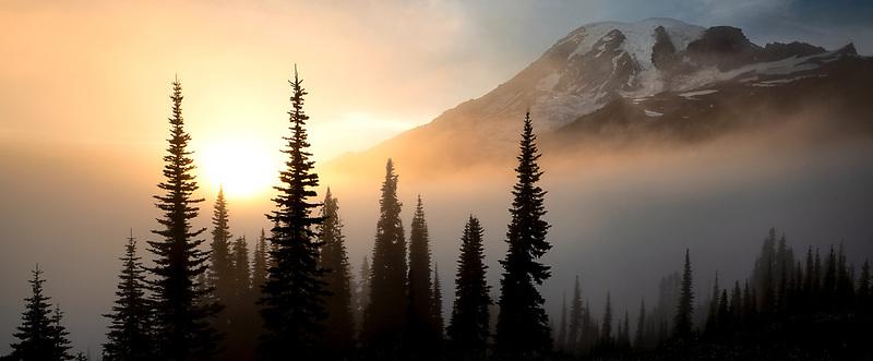 Sunset, fog and wildflowers. Mt. Rainier National Park, Washington