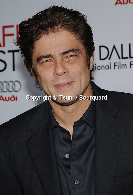 Benicio Del Toro -<br /> CHE and Two Lovers Premiere at the Chinese Theatre In Los Angeles.
