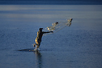 Traditional Palauan fisherman casting his net, Palau Micronesia