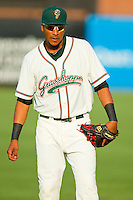 Rehiner Cordova (1) of the Greensboro Grasshoppers warms up in the outfield prior to the game against the Charleston RiverDogs at NewBridge Bank Park on July 17, 2013 in Greensboro, North Carolina.  The Grasshoppers defeated the RiverDogs 4-3.  (Brian Westerholt/Four Seam Images)