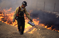 A state of Alaska Department of Forestry employee uses a drip torch to start a back-burn during a wildfire training exercise near Wasilla, Alaska.