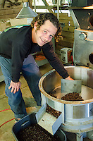 Owner Kaleo transferring cooled coffee beans into container, Kaleo's Koffee, Pua'a Kea Farm, Pa'auilo, Big Island.