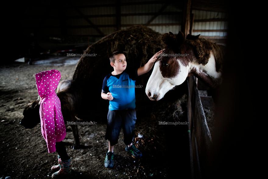 Ohio, Usa. Oktober 2016. Liam (9) klapper hestene. Til venstre står Connely (7). Fotografier til dokument om valget i Usa og Appalachene. Foto: Christopher Olssøn