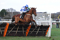 Winner of The Strong Flavours Catering Handicap Hurdle  Age of Wisdom ridden by Niall Houlahan and trained by Gary Moore during Horse Racing at Plumpton Racecourse on 10th February 2020