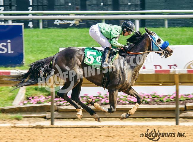 Sterlings Dolly winning at Delaware Park on 6/2/16