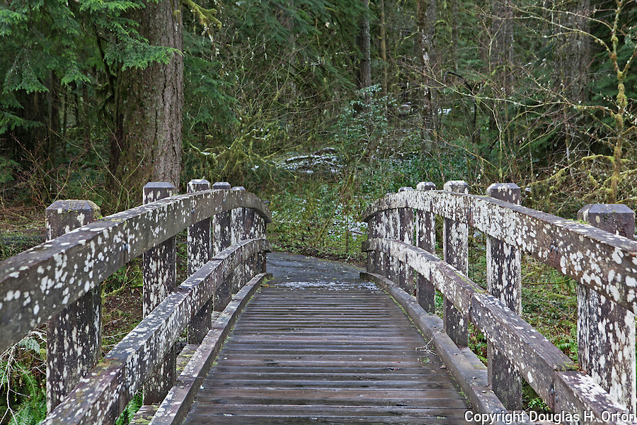 HIkers bridge over silver creek on snowy spring morning, Silver Falls State Park.  Oregon.