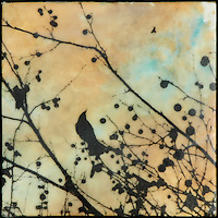 Mixed media photography over encaustic painting of bird in branch with berries against sunset sky.