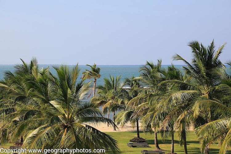 Palm trees sandy beach Amaya Beach Resort and Spa hotel, Pasikudah Bay, Eastern Province, Sri Lanka, Asia