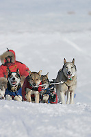 Saturday March 10, 2007   ----   Sebastian Schnuelle and team run up the bank of the Yukon River on Saturday to Anvik.