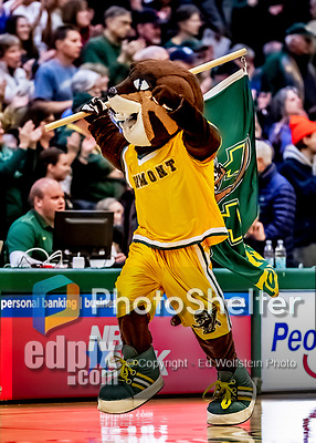 8 January 2020: University of Vermont Catamount Mascot Rally Cat entertains the fans prior to a game against the Stony Brook University Seawolves at Patrick Gymnasium in Burlington, Vermont. The Seawolves defeated the Catamounts 81-77 in a closely fought game. Mandatory Credit: Ed Wolfstein Photo *** RAW (NEF) Image File Available ***