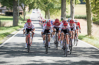 Team Trek-Segafredo ripping the peloton into pieces midway through the race<br /> <br /> 60th Grand Prix de Wallonie 2019<br /> 1 day race from Blegny to Citadelle de Namur (BEL / 206km)<br /> <br /> ©kramon