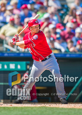 6 March 2016: Washington Nationals outfielder Chris Heisey in action during a Spring Training pre-season game against the St. Louis Cardinals at Roger Dean Stadium in Jupiter, Florida. The Nationals defeated the Cardinals 5-2 in Grapefruit League play. Mandatory Credit: Ed Wolfstein Photo *** RAW (NEF) Image File Available ***