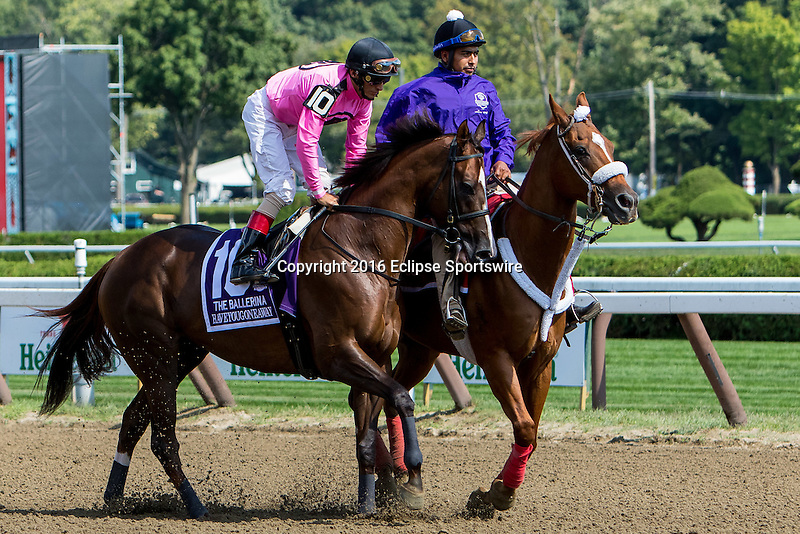 SARATOGA SPRINGS - AUGUST 27: Haveyougoneaway #10, ridden by John Velazquez, during the post parade before the Ballerina Stakes on Travers Stakes Day at Saratoga Race Course on August 27, 2016 in Saratoga Springs, New York. (Photo by Sue Kawczynski/Eclipse Sportswire/Getty Images)