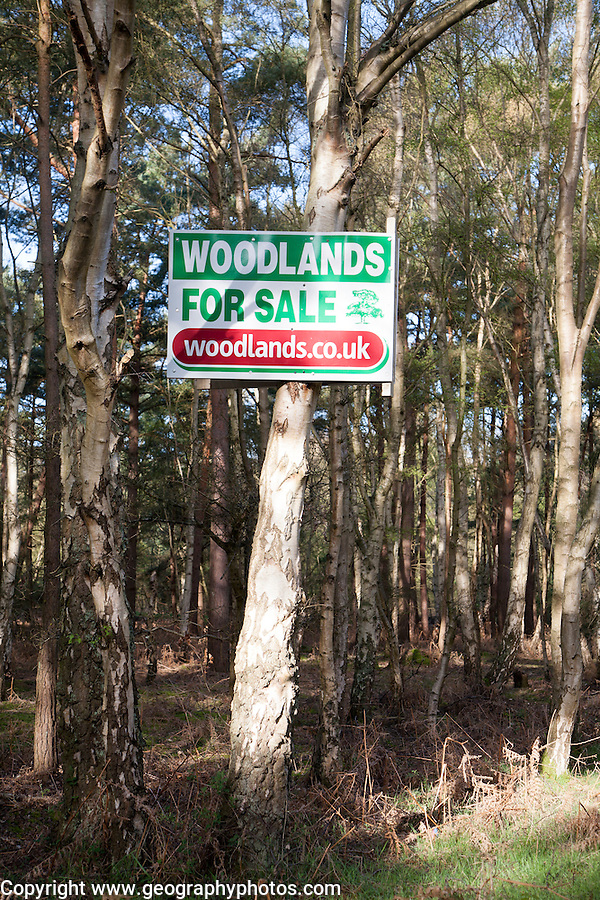 Sign advertising woodlands for sale, Hollesley, Suffolk, England