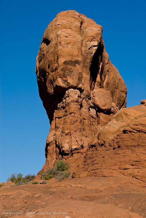 Arches National Park Landscapes - Elephant Butte