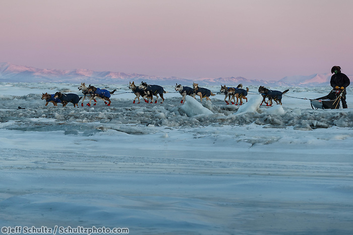 Joar Leifseth Ulsom crosses a pressure ridge on the sea ice in front of Koyuk on Sunday, March 9, during the Iditarod Sled Dog Race 2014.<br /> <br /> PHOTO (c) BY JEFF SCHULTZ/IditarodPhotos.com -- REPRODUCTION PROHIBITED WITHOUT PERMISSION