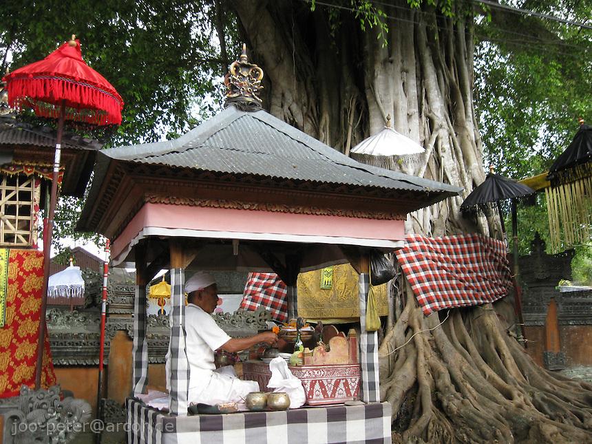 priest speaking prayers in temple of village Bangli, central Bali, archipelago Indonesia