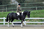 05/04/2015 - Classes 6 to 12 - Showing Show - Brook Farm Training Centre
