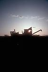 American farms, Wheat combines at sunrise, Dayton, Columbia Basin,  Washington State, USA,