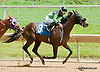 Quiet Favorite winning at Delaware Park on 7/4/13