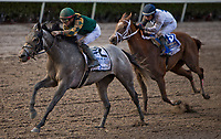 HALLANDALE BEACH, FL - JANUARY 27: Jordan's Henny #2, with Tyler Gaffalione riding, wins the Hurricane Bertie Stakes on Pegasus World Cup Invitational Day at Gulfstream Park Race Track on January 27, 2018 in Hallandale Beach, Florida. (Photo by Kazushi Ishida/Eclipse Sportswire/Getty Images)