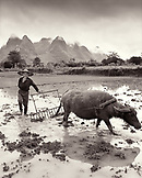 CHINA, Guilin, portrait of smoking farmer with buffalo in field