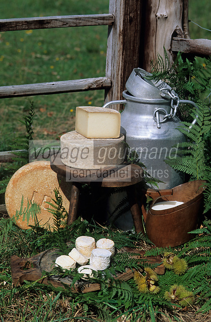 Europe/France/Aquitaine/64/Pyrénées-Atlantiques/Env de Pau/Bearn: Fromages de brebis d'Ossau et fromage de chèvre fermier