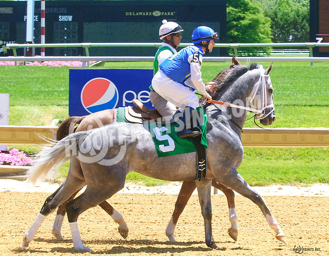 Sir Rockport at Delaware Park on 6/13/16