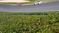 Racing up a green hill, Barber Motorsports Park, Leeds, AL. (Photo by Brian Cleary/www.bcpix.com)