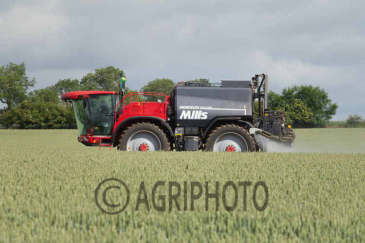 20.6.2020 Spraying T3 fungicide on to wheat <br /> ©Tim Scrivener Photographer 07850 303986<br />      ....Covering Agriculture In The UK.