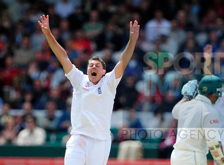 England bowler Darren Pattinson appeals for lbw to claim Hashim Amla's wicket